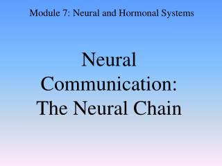 Neural Communication:  The Neural Chain