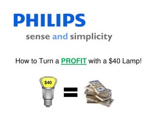 How to Turn a  PROFIT  with a $40 Lamp!