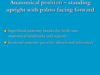 anatomical position   standing upright with palms facing forward