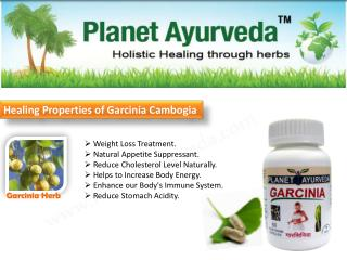 Weight Loss Treatment.  Natural Appetite Suppressant.  Reduce Cholesterol Level Naturally.  Helps to Increase Body Ene
