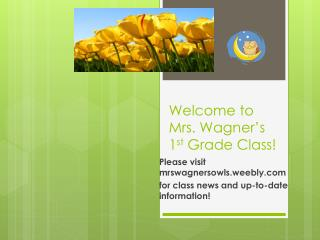 Welcome to Mrs. Wagner's 1 st  Grade Class!