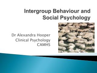 Intergroup  Behaviour and Social Psychology