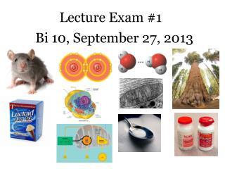 Lecture Exam #1