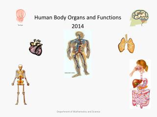 Human Body Organs and Functions 2014
