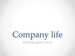 Company life