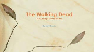 The Walking Dead A Sociological Perspective