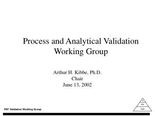 process and analytical validation working group