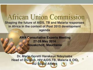 Shaping the future of AIDS, TB and Malaria responses in Africa in the context of Post 2015 development agenda  AWA Cons