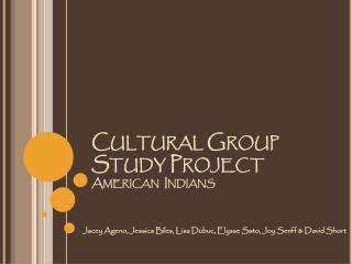 Cultural Group Study Project American  Indians