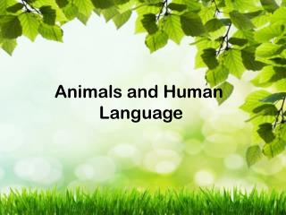 Animals and Human  Language