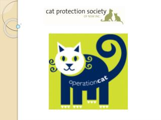 The Cat Protection Society of NSW
