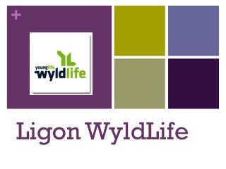 Ligon WyldLife