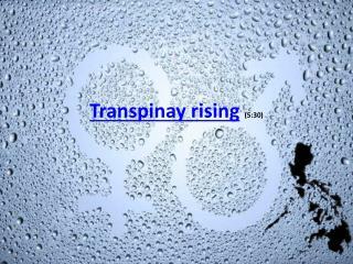 Transpinay rising (5:30)