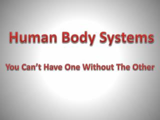 Human Body Systems You Can't  H ave  O ne  W ithout  T he Other