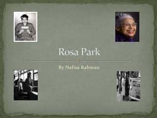 Rosa Park