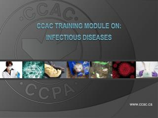 CCAC Training Module  on: infectious Diseases
