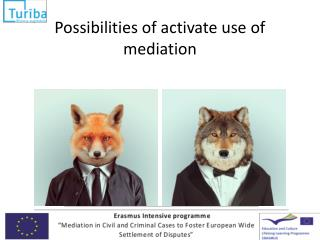 Possibilities  of activate use of  mediation