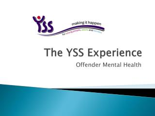 The YSS Experience