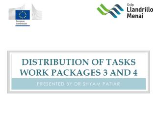 Distribution of tasks work packages 3 and 4