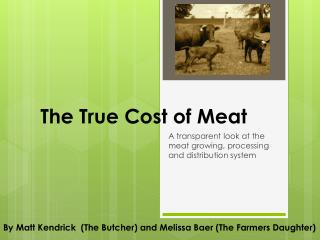 The True Cost of Meat