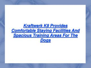 Kraftwerk K9 Provides Training Areas For Dogs