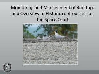 Monitoring and Management of Rooftops and Overview of Historic rooftop sites on the Space Coast