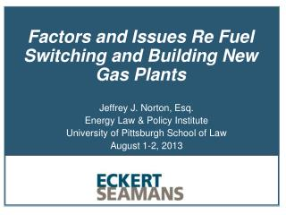 Factors and Issues Re Fuel Switching and Building New Gas Plants