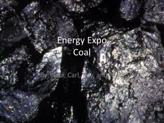 Energy Expo Coal