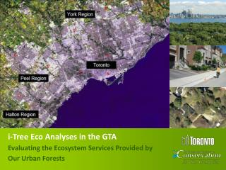 i-Tree Eco Analyses in the GTA Evaluating the Ecosystem Services Provided by Our Urban Forests
