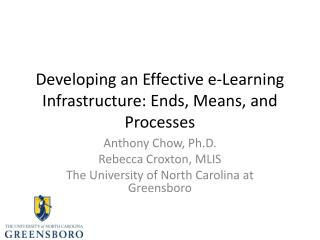 Developing an Effective e-Learning Infrastructure: Ends, Means, and Processes