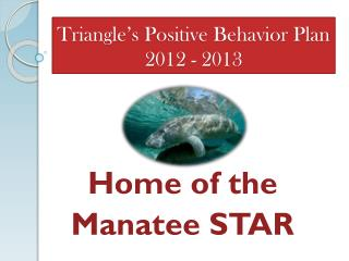 Triangle's Positive Behavior Plan 2012 - 2013
