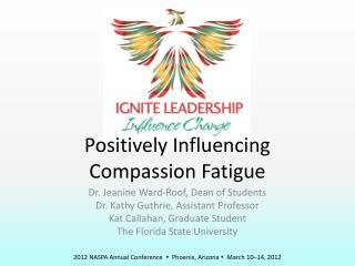 Positively Influencing Compassion  Fatigue