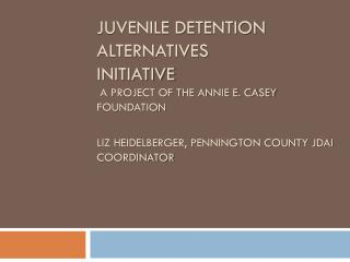 Juvenile Detention Alternatives Initiative  A project of the Annie E. Casey Foundation Liz Heidelberger, Pennington Cou