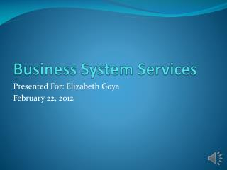 Business System Services