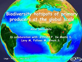 Biodiversity hotspots  of  primary producers at  the global  scale