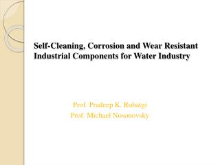 Self-Cleaning, Corrosion and Wear Resistant Industrial Components for Water Industry