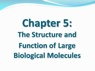 Chapter  5:            The  Structure and Function  of Large Biological Molecules