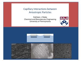 Capillary Interactions between  Anisotropic Particles Kathleen J  Stebe Chemical and  Biomolecular  Engineering Univers