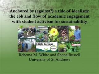 Anchored by (against?) a tide of idealism: the ebb and flow of academic engagement with student activism for  sustainab