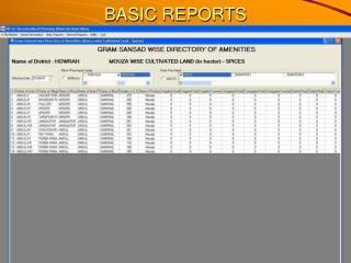 BASIC REPORTS