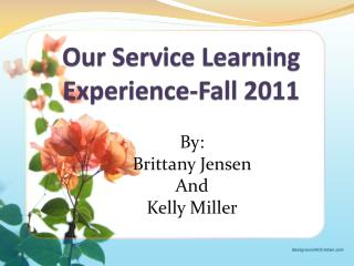 Our Service Learning Experience-Fall 2011