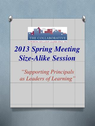 2013 Spring Meeting  Size-Alike Session