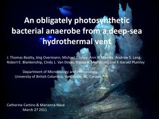 An  obligately  photosynthetic bacterial anaerobe from a deep-sea hydrothermal vent