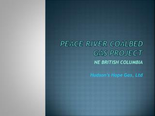 PEACE RIVER COALBED GAS PROJECT