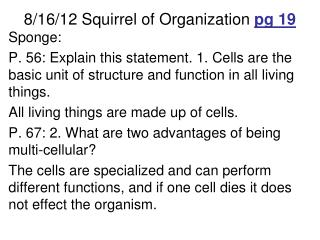 8/16/12 Squirrel of Organization  pg  19