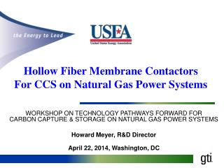 WORKSHOP  ON TECHNOLOGY  PATHWAYS FORWARD FOR CARBON CAPTURE & STORAGE  ON NATURAL  GAS POWER SYSTEMS Howard Meyer, R&D