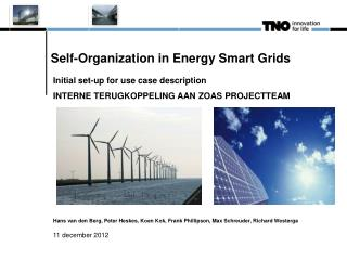 Self-Organization in Energy Smart Grids