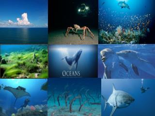 Approximately 72% of the planet's surface is covered by salt water.