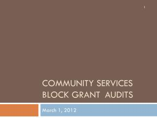 Community Services Block Grant	Audits