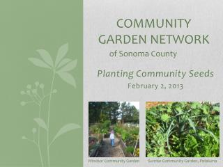 Community garden network  o f  S onoma  C ounty